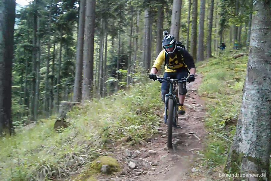Spot Check Vogesen Trail to Murbach