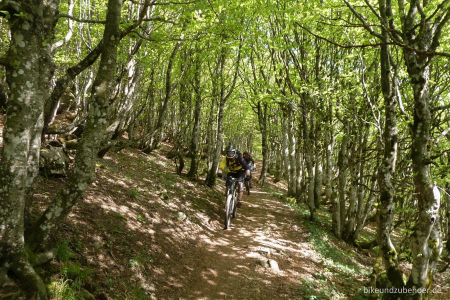 Spot Check Vogesen Trail2