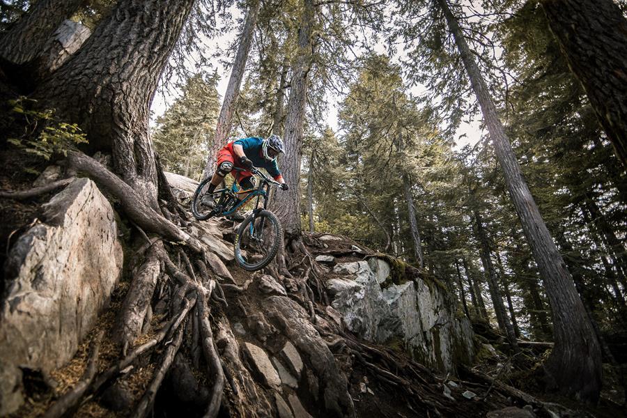RobinONeill_BikePark_7124