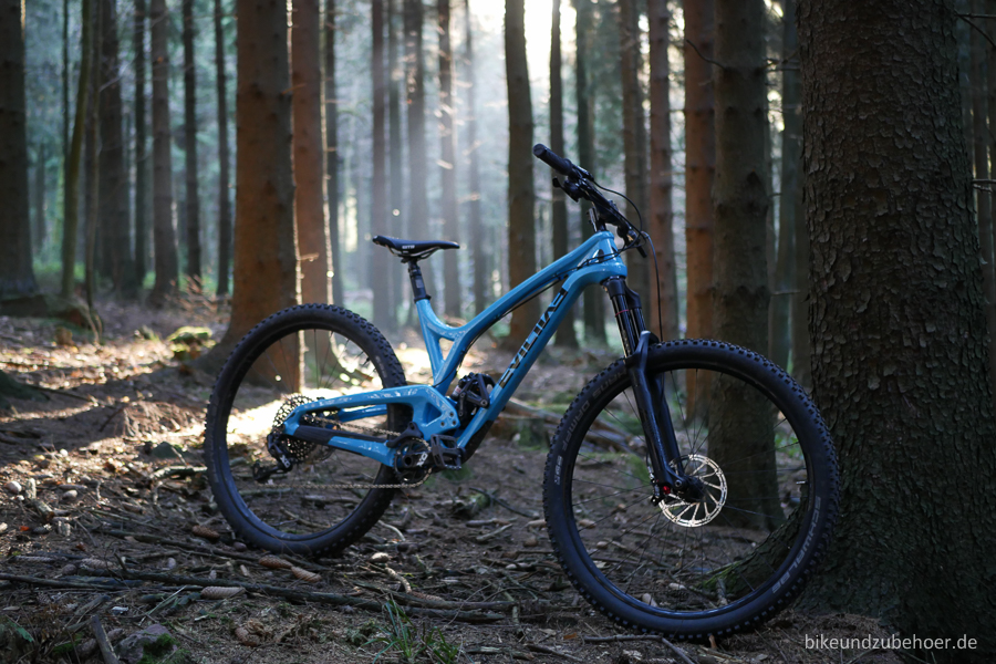 the-wreckoning-in-the-woods